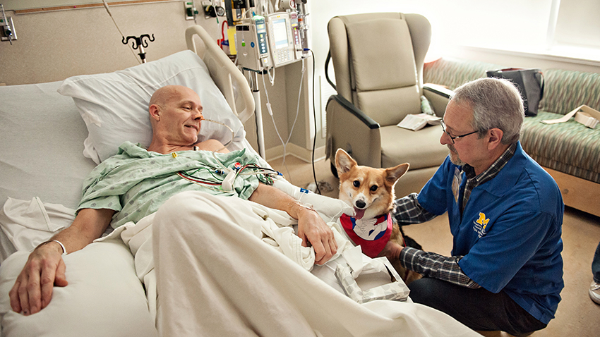 Therapy Dog Brings Joy to Hospital Patients, One Wag at a Time