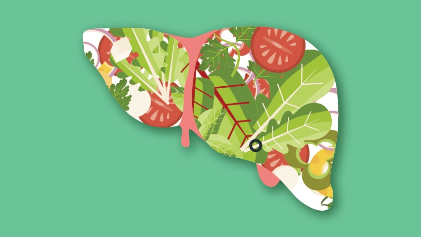 healthy-liver-illustration