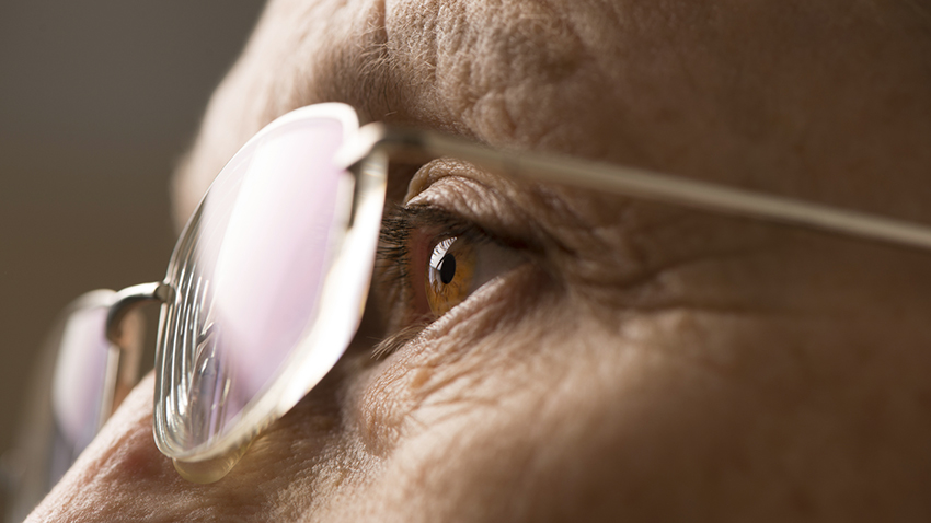 What Is The Difference Between Wet Or Dry Macular Degeneration