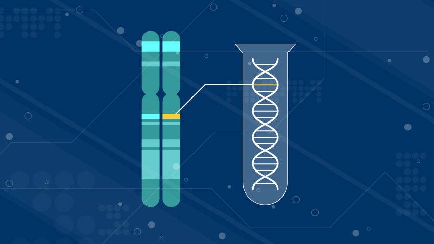 genetic testing DNA chromosomes in blue