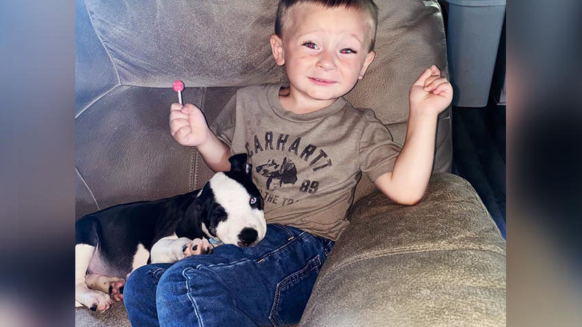 Little boy with puppy on couch